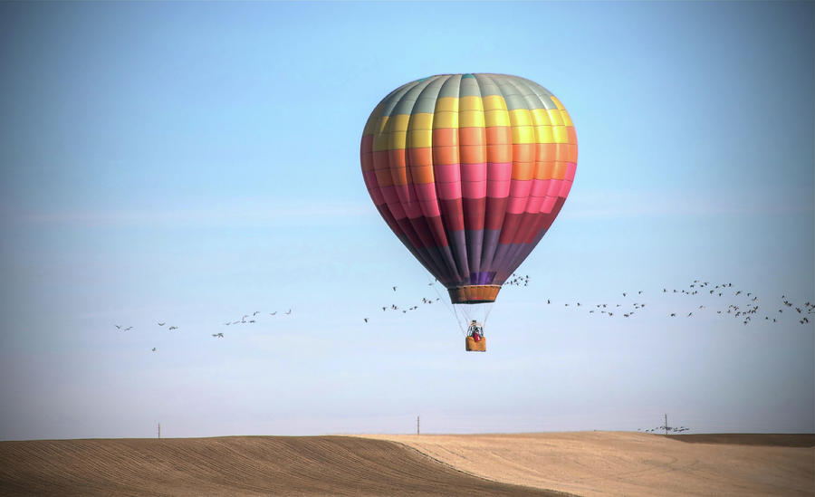 Hot Air Balloon And Birds Photograph by Photo By Greg Thow