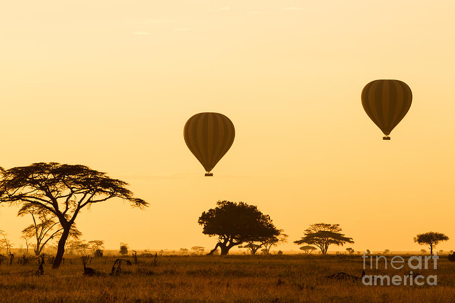 Tanzania Photograph - Hot Air Balloons Over The Serengeti At by Jez Bennett