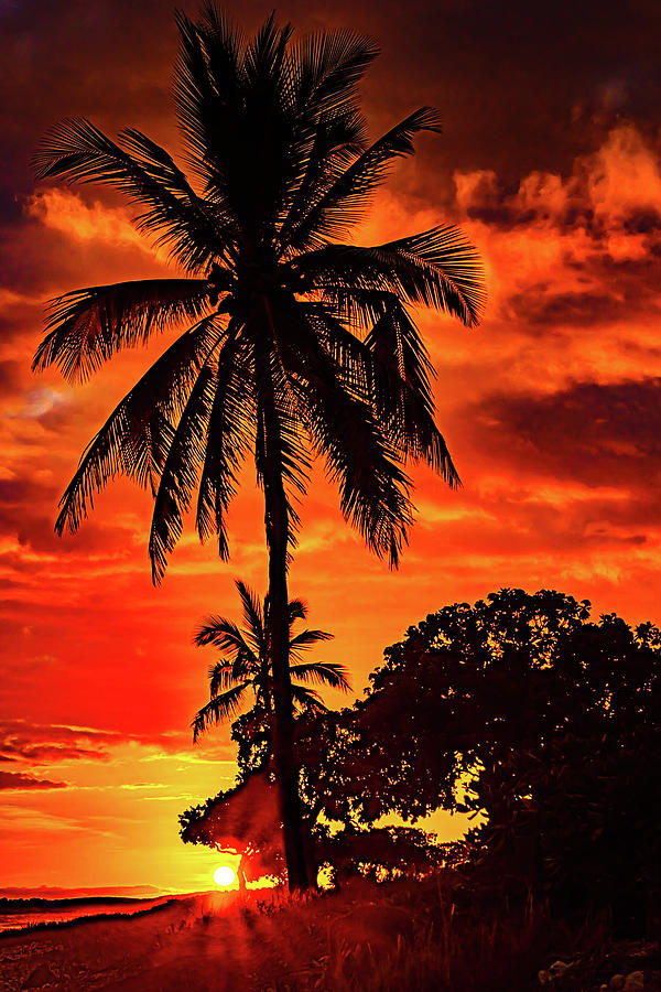 Hot Sky Sunset by John Bauer