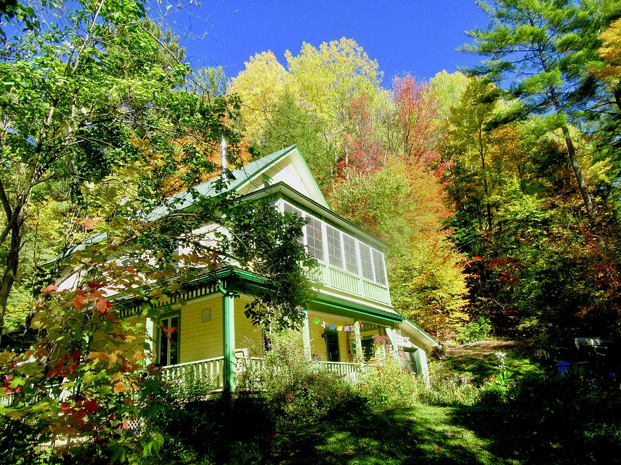 House in the Woods by Stephanie Moore
