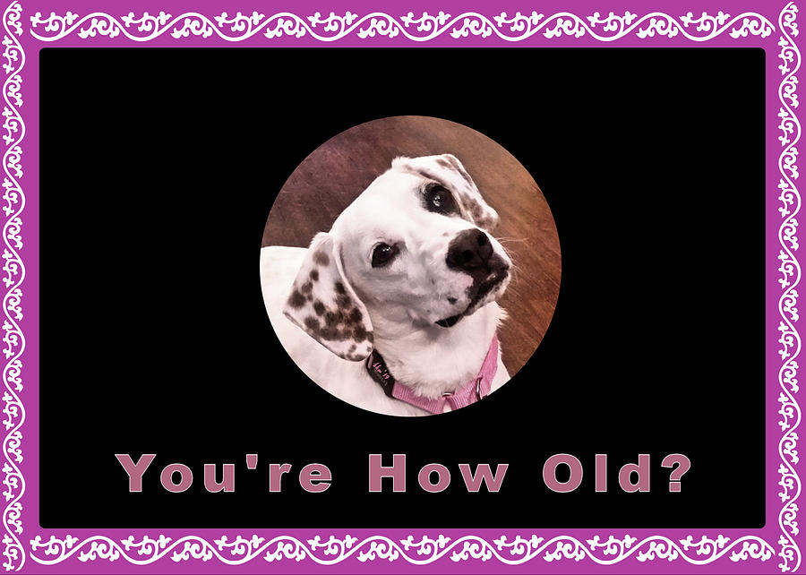 How Old Birthday With Sophie by Kathy K McClellan