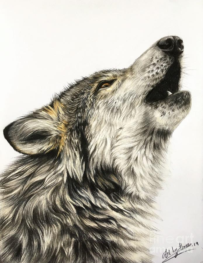 Howling Wolf Drawing By Art By Three Sarah Rebekah Rachel