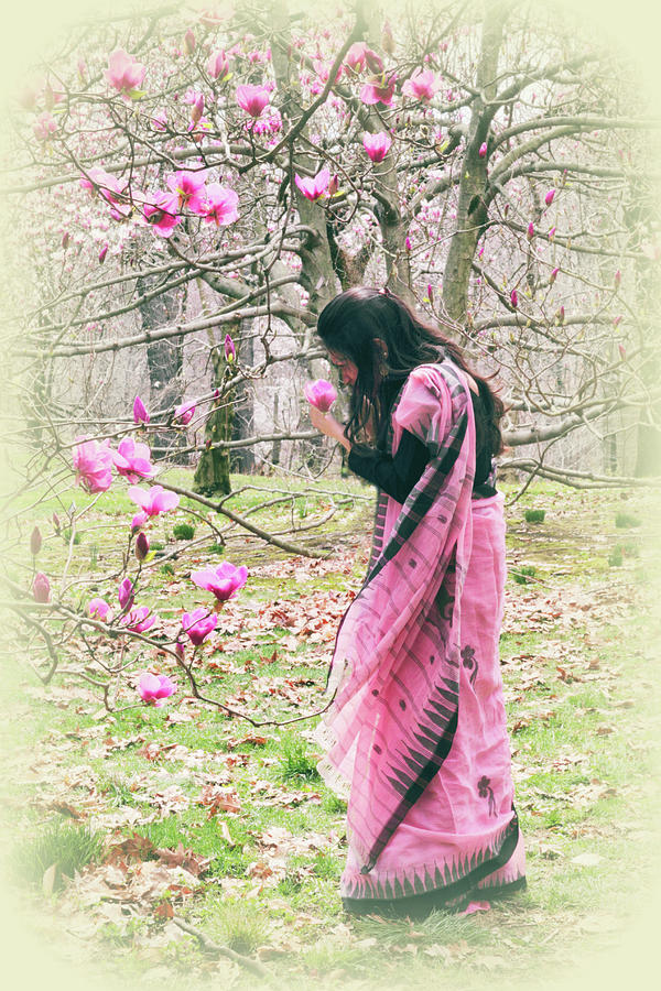 Magnolia Trees Photograph - Scent Of Magnolia by Jessica Jenney