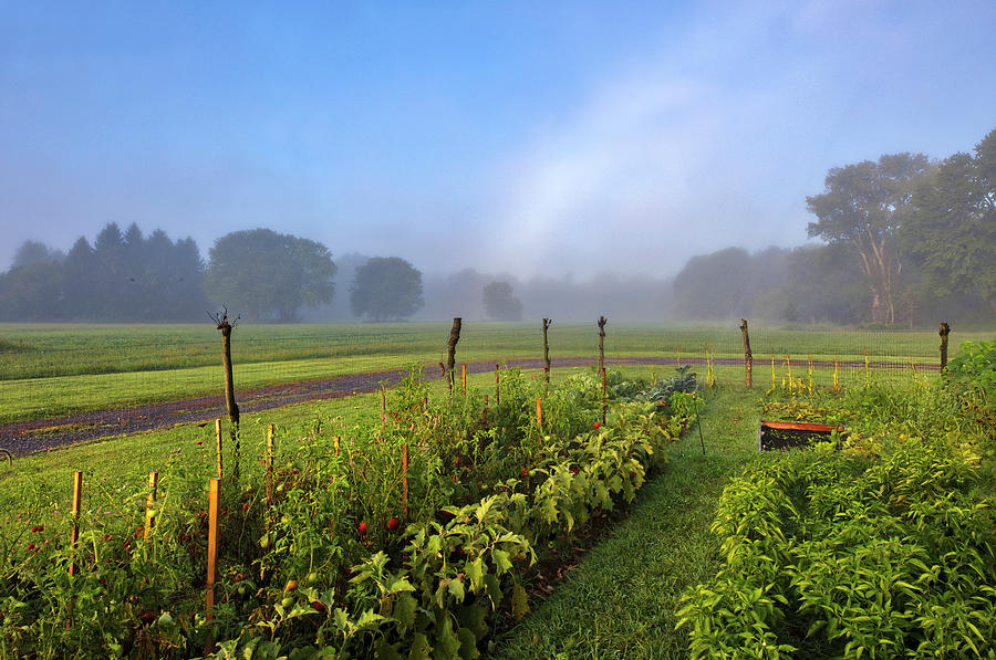 Hudson River Valley Farm and Vegetagle Garden by Juergen Roth