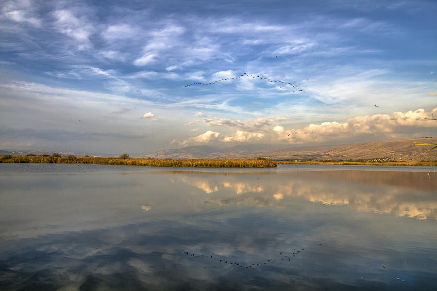 Hula Lake and the Golan Heights by Alon Mandel