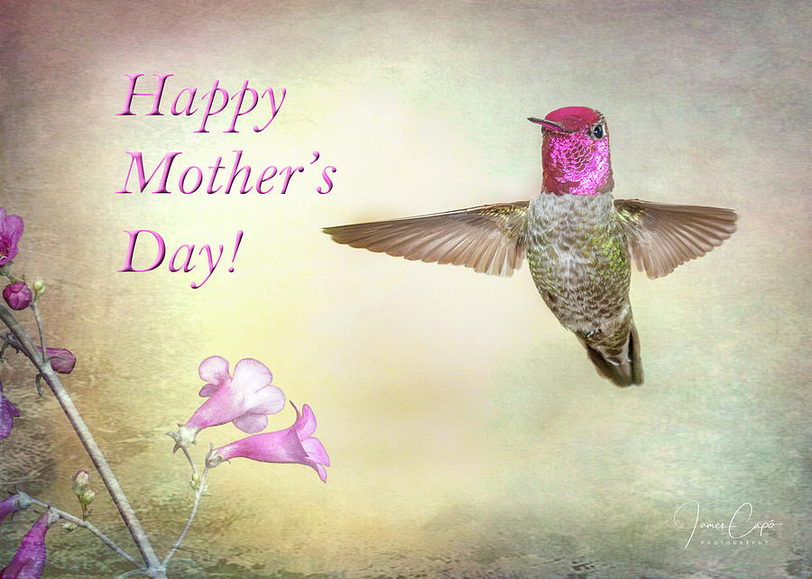 Hummer-Happy Mother's Day by James Capo