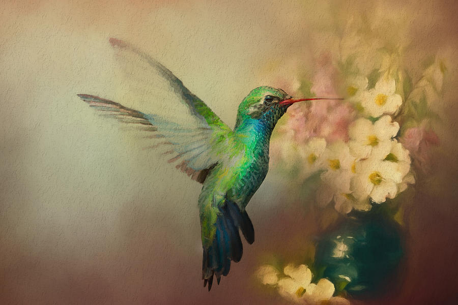 Hummer in the Garden by Barbara Manis