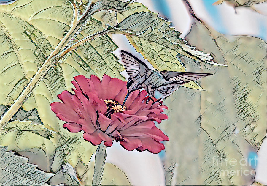 Hummingbird Art - A Drink From The Zinnia by Kerri Farley