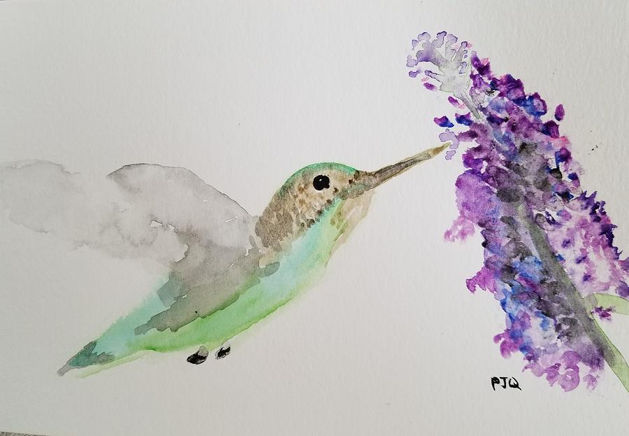 Hummingbird on Buddleia by PJQandFriends Photography