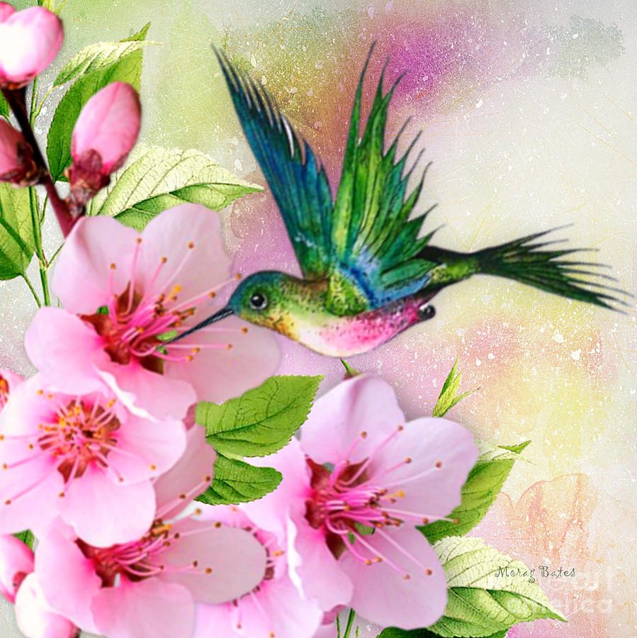 Hummingbird on Pink Blossom by Morag Bates