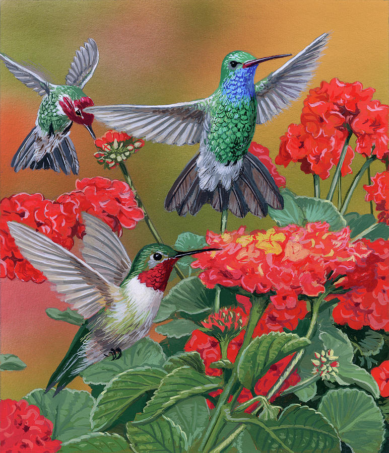 Hummingbirds & Flowers Painting by William Vanderdasson