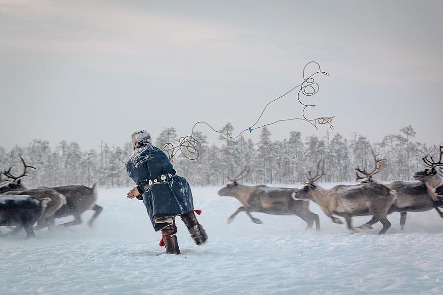 Lasso Photograph - Hunting by Patrik Minar