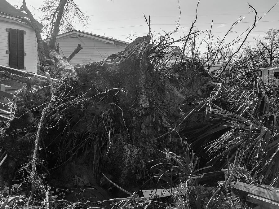 Hurricane Michael 5 by Debra Forand