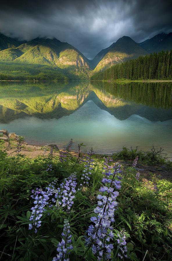 Hurried Light / Holland Lake, Montana  by Nicholas Parker
