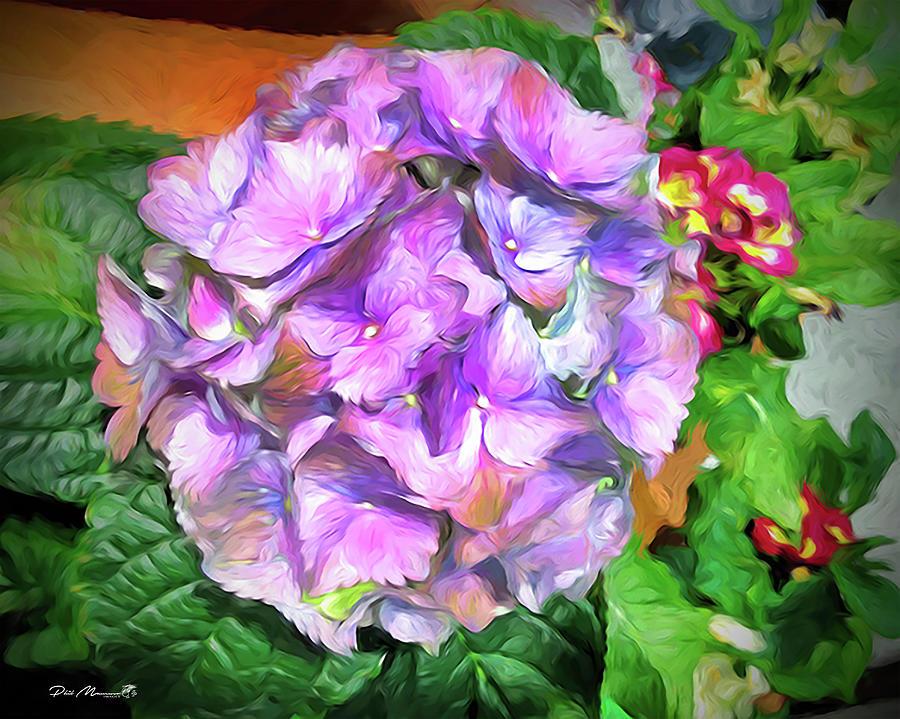 Hydrangea Hijinks 2 by Phil Mancuso