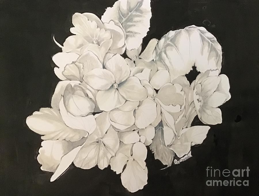 Hydrangea in  Black Dress by Laurel Adams