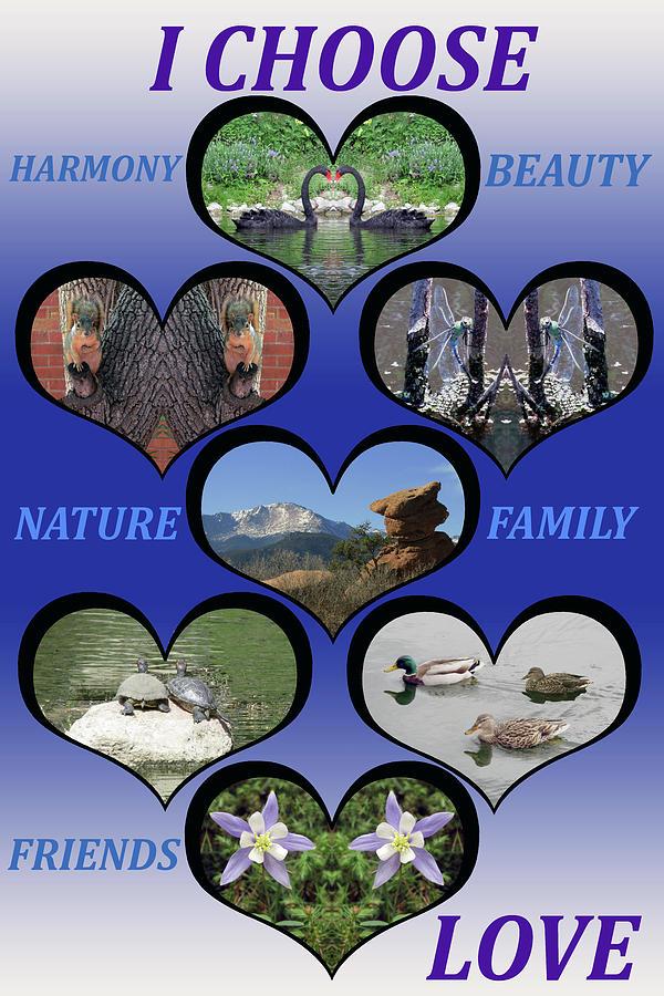 I Choose Love Heartfelt Images by Julia L Wright