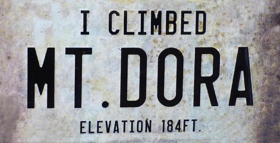I Climbed Mt Dora 300 Mixed Media
