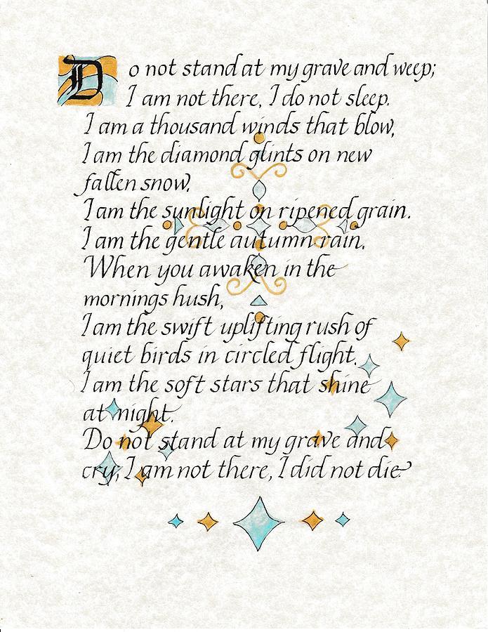 I Did Not Die by Valerie Bassett