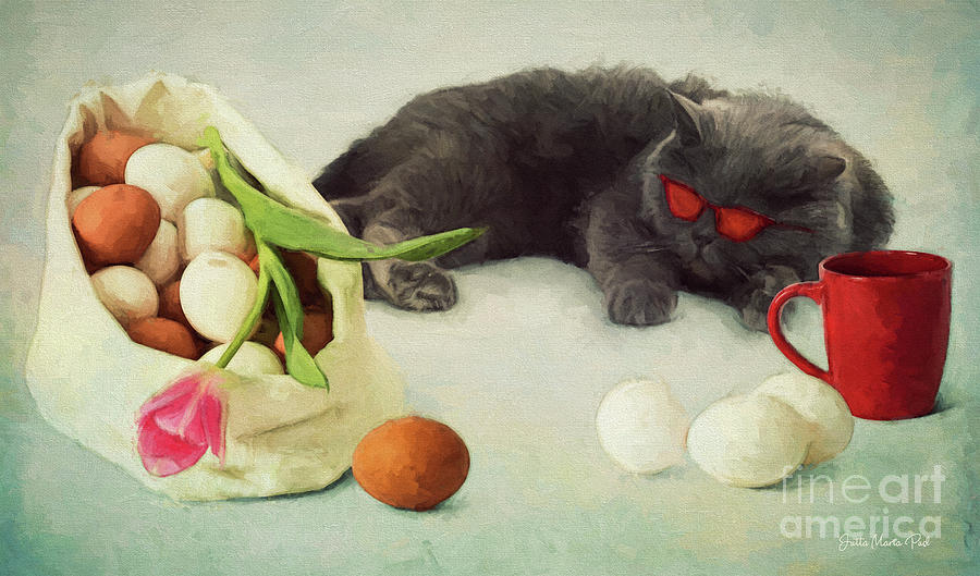 I Do Not Like Eggs by Jutta Maria Pusl