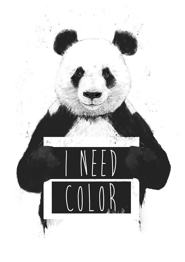 Panda Mixed Media - I Need Color by Balazs Solti