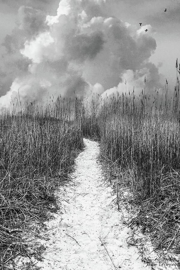 I Walk Alone by John Rivera