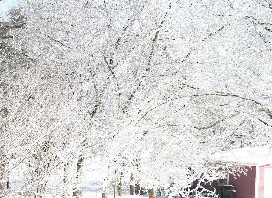 Ice and Snow1 by Belinda Landtroop