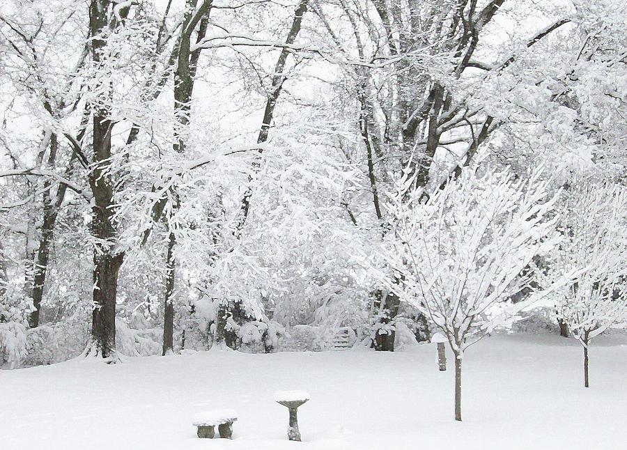 Ice and Snow2 by Belinda Landtroop