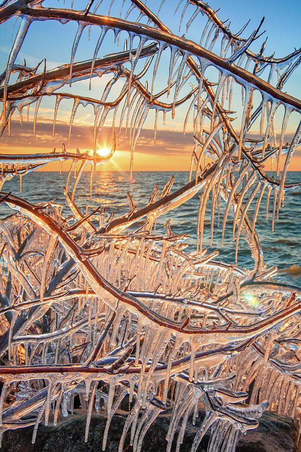 Ice Ice Baby by Emmanuel Panagiotakis