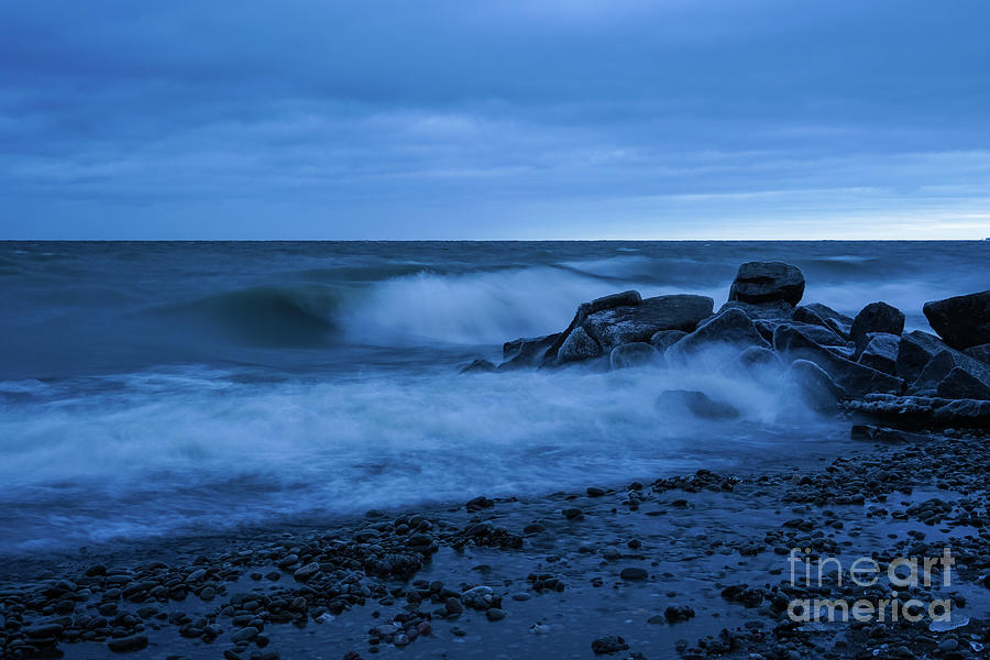 Iced Blues by Rachel Cohen