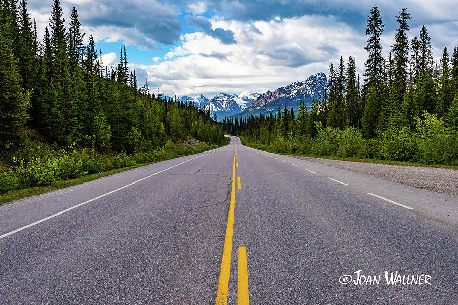 Alberta Photograph - Icefields Parkway by Joan Wallner