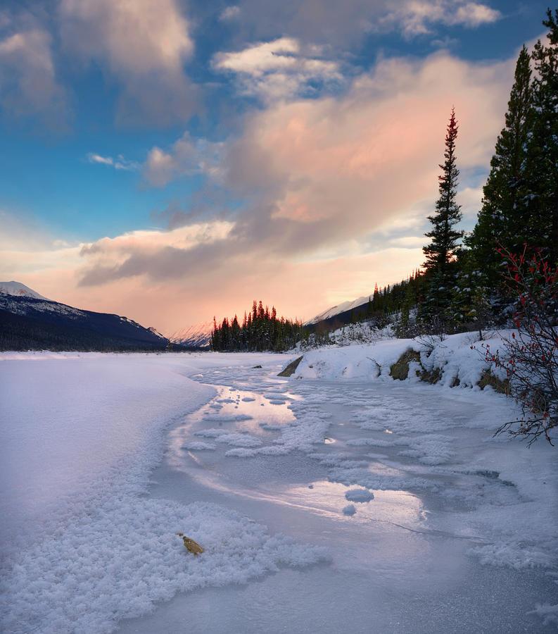 Icefields Parkway Winter Morning by Dan Jurak