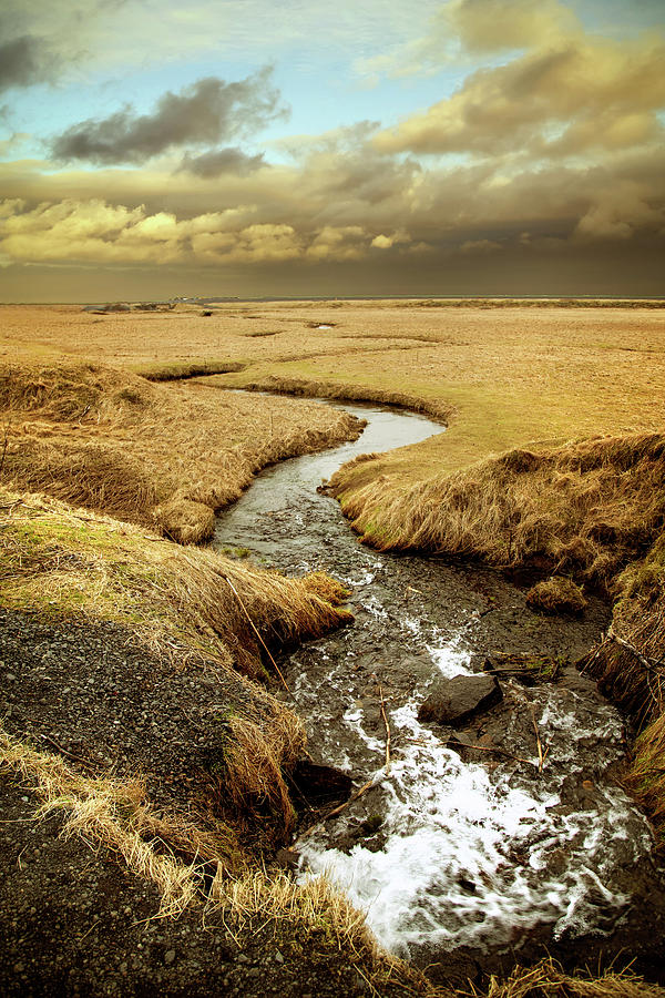 Iceland Creek by Kathryn McBride