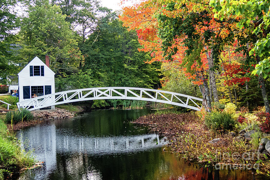 Iconic Somesville Bridge in Autumn by Anita Pollak