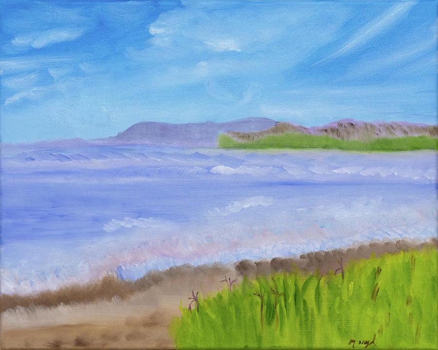 Icy Blue Ventura Beach by Meryl Goudey