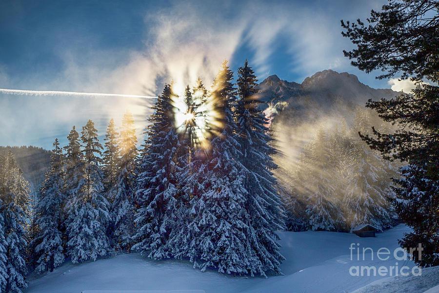 icy sunbeams by Fabian Roessler