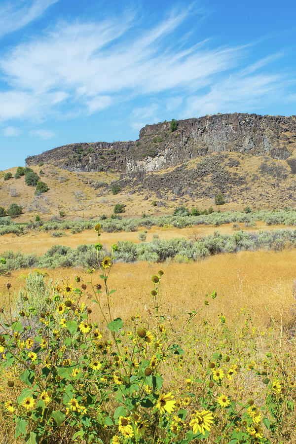 Idaho Countryside by Bonnie Bruno
