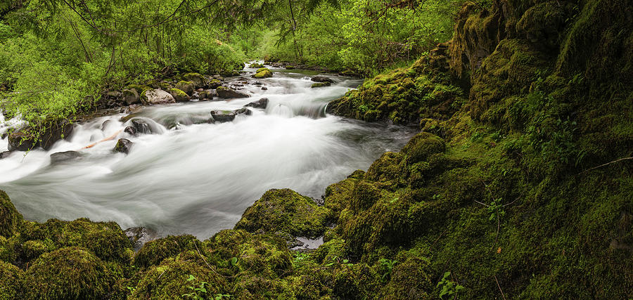 Idyllic Forest River Rushing Through Photograph by Fotovoyager