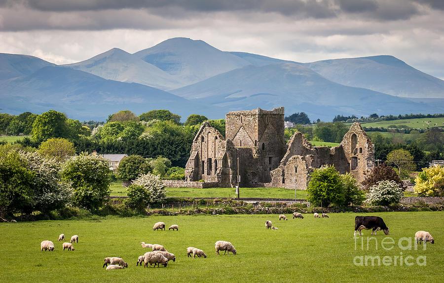 Country Photograph - Idyllic Irish Landscape by Pierre Leclerc