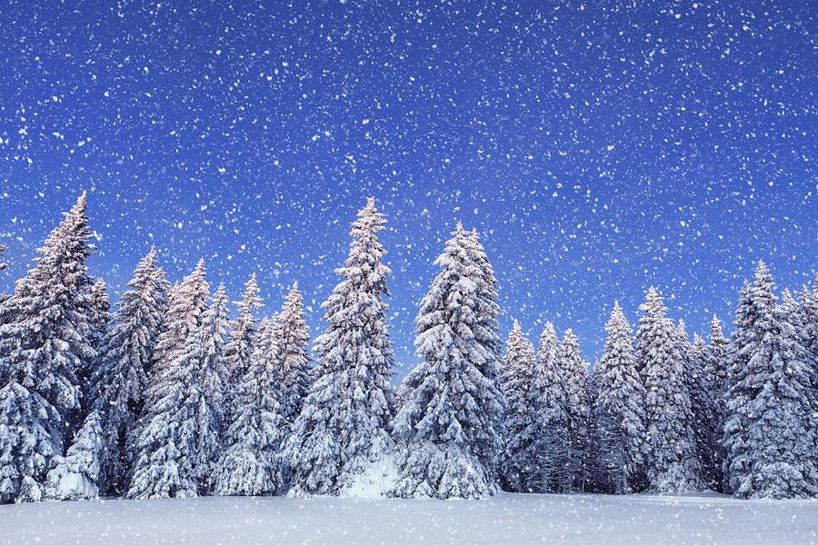 Idyllic Winter Day Photograph by Borchee