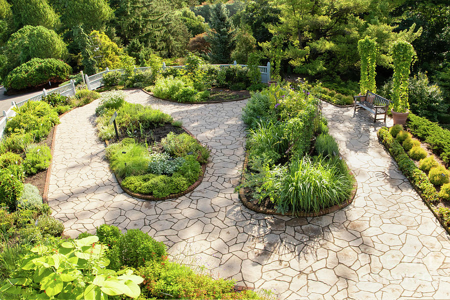 Botanic Gardens Photograph - If Gulliver Had A Herb Garden by Marilyn Cornwell