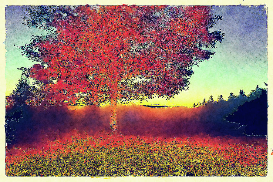 If Its Red Its Autumn FX by Dan Carmichael