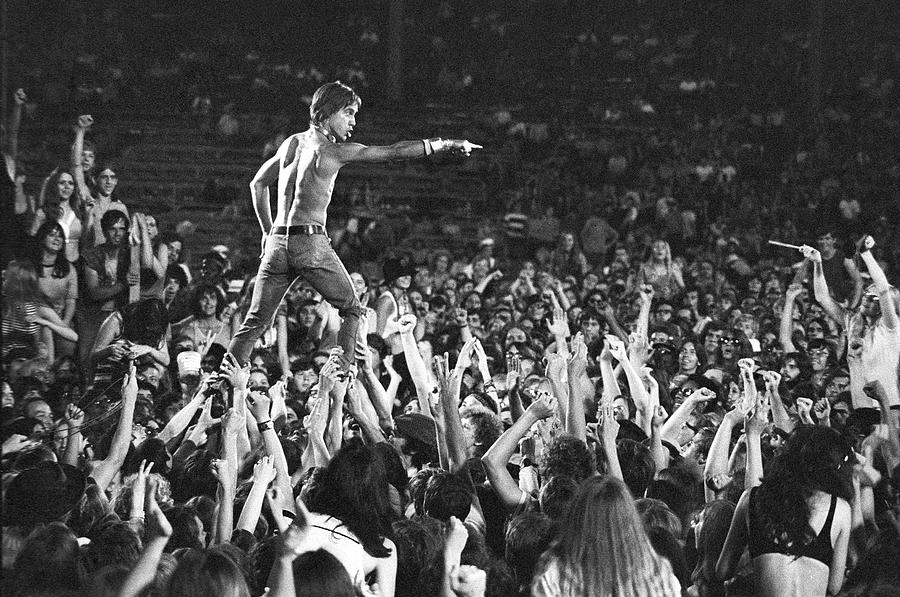 Iggy Pop Live Photograph by Tom Copi