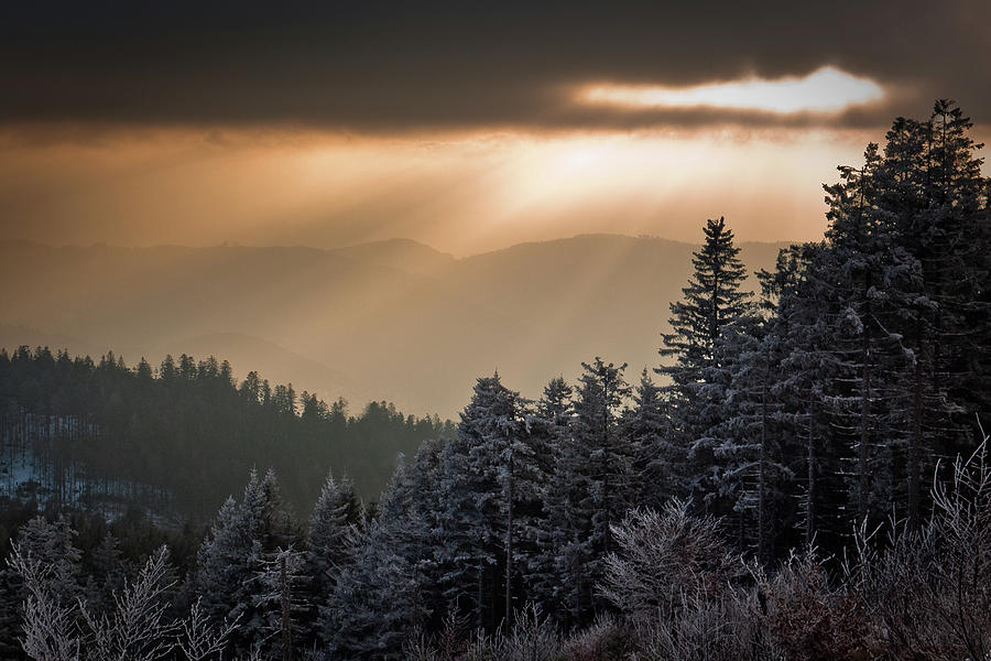 Illuminated Winter Landscape Photograph by Andreas Wonisch
