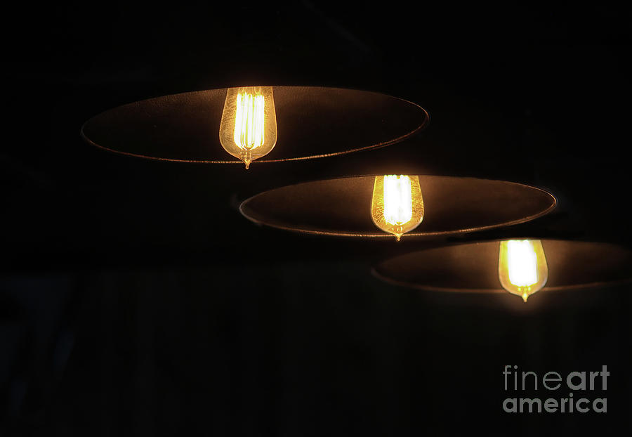 Illuminating Trio by Karen Adams