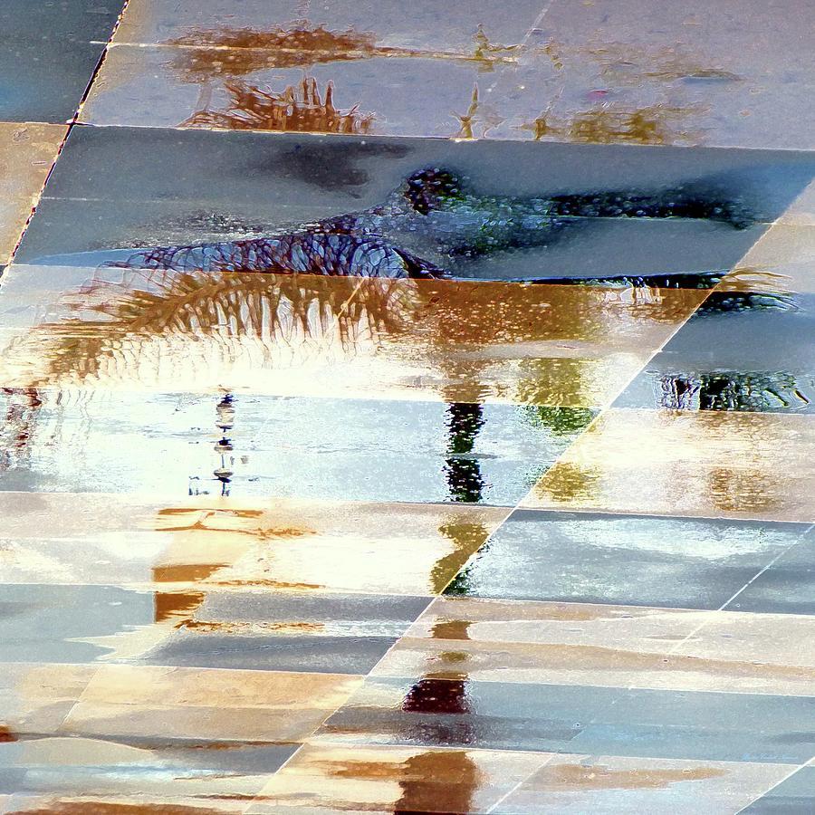 Illusory Palm Reflection by Barbie Corbett-Newmin
