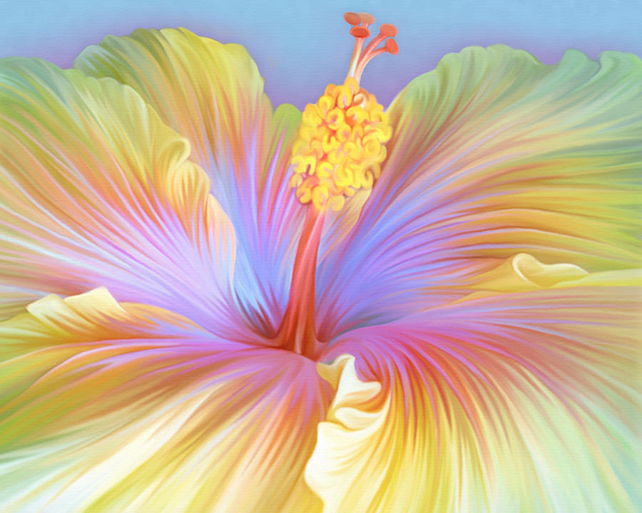 Illustration Of Hibiscus Flower Digital Art by Illustration By Shannon Posedenti