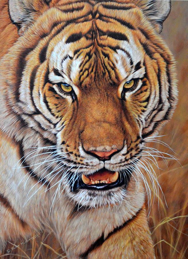 Tiger Painting - Im No Kitten - Tiger by Alan M Hunt