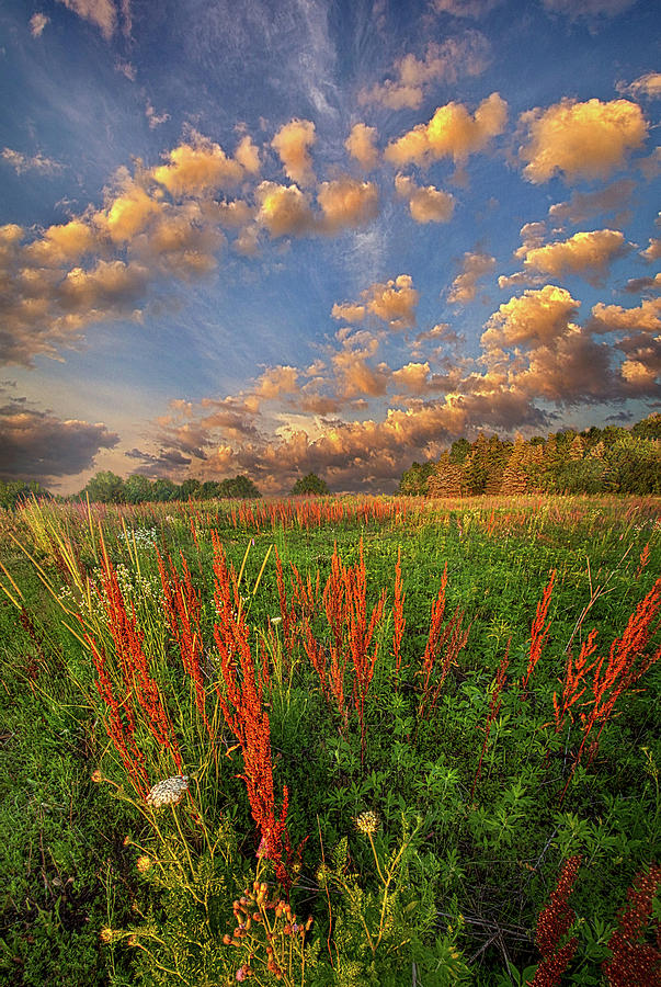 I'm Right There In Your Heart by Phil Koch