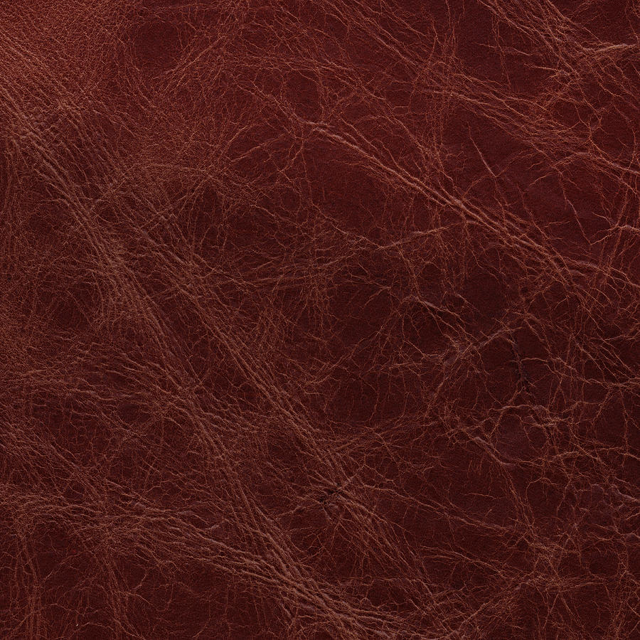 Image Of Severly Grained Leather Photograph by Billnoll